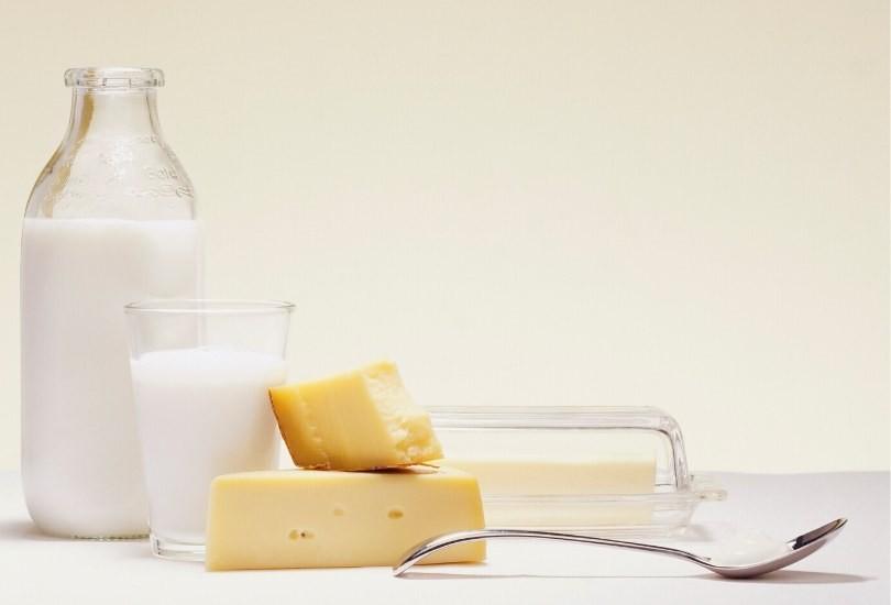 leche y quesos sin pasteurizar embarazo